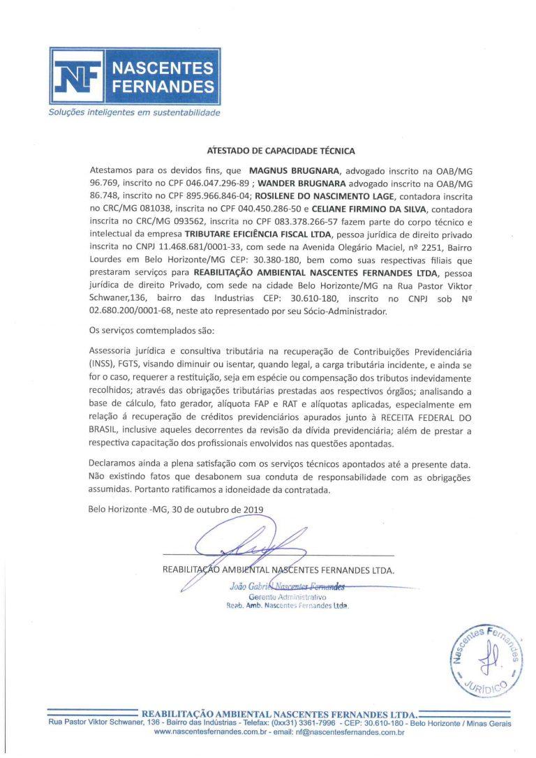MAGNUS ROSE CELIANE - ATESTADO NASCENTES FERNANDES-1